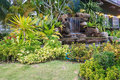 Garden Backyard With Waterfall Stock Images - 34974564