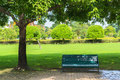 Bench In A Park Royalty Free Stock Photo - 34985265