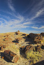 Petrified Forest Royalty Free Stock Photo - 3501995
