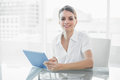 Gleeful Smiling Businesswoman Working With Her Tablet Looking At Camera Royalty Free Stock Images - 35020769