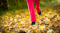 Runner Legs Running Shoes. Woman Jogging In Autumn Park Royalty Free Stock Image - 35032326