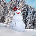 Snowman 3d Illustrated Royalty Free Stock Photos - 35084318
