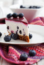 Blueberry Cheesecake Royalty Free Stock Images - 35158239
