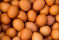 Chicken Eggs Royalty Free Stock Photos - 35191558