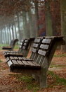 Wooden Benches In Autumn Royalty Free Stock Photos - 3524028