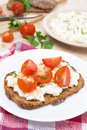 Sandwich With Homemade Cottage Cheese, Pepper, Herbs And Cherry Stock Photo - 35244580