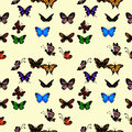 Butterflies Seamless Pattern Royalty Free Stock Images - 35268909