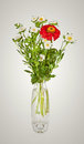 Bouquet From Red Daisy-gerbera And White Aster In Glass Vase Royalty Free Stock Photo - 35275835