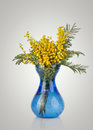 Bouquet Of Yellow Mimosa Acacia Flowers In Blue Glass Vase Stock Photo - 35276020