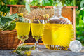 Homemade Liqueur Made ​​of Honey And Lime In Garden Royalty Free Stock Photos - 35295008
