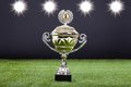 Trophy Cup Lying On Green Pitch Filed Stock Photos - 35311003