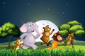 Animals Walking In The Middle Of The Night Royalty Free Stock Photo - 35321895