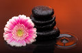 Massage Stones With Big Flower And Water Drops Stock Photo - 35335860
