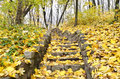 Staircase Strewn With Yellow Leaves Royalty Free Stock Photos - 35449688