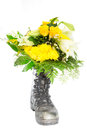Flowerboot Royalty Free Stock Image - 35452846