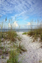 Path Through The Dunes To Calm Blue Ocean Royalty Free Stock Photography - 35498207