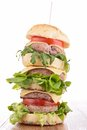 Big Hamburger Royalty Free Stock Image - 35509446