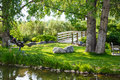 Benches In Grass Between Bridge And Pond Royalty Free Stock Photos - 35555028