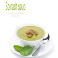 Bowl Of Traditional Spinach Soup With Croutons, Isolated Stock Photography - 35572702