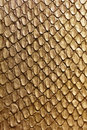 Gold Snake Texture Royalty Free Stock Photos - 35588738