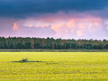 Mowed Meadow With Forest Edge Stock Photo - 35597530