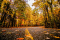Autumn Country Road Stock Images - 35619374