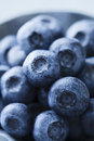 Blueberries Royalty Free Stock Image - 35641596