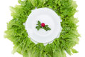 Close Up Of Plate With Radish And Lettuce Around Royalty Free Stock Photos - 35656518