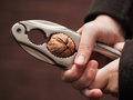 Cracking The Nut Stock Images - 35663404