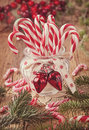 Candy Canes Stock Image - 35691491