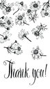 Thank You Card With Camomiles. Calligraphy And Han Stock Photo - 35691770