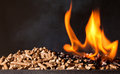 Wood Pellet Stock Photo - 35695430