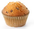 Tasty Muffin In Closeup Stock Photos - 3571463