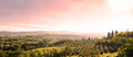 Beautiful Tuscan Landscape Stock Images - 35706044