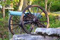 Cannon Royalty Free Stock Images - 35716619