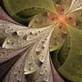 Beautiful Fractal Flower In Beige, Brown And Green. Royalty Free Stock Image - 35721556