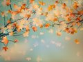 Abstract Autumn Yellow Leaves Background. EPS 10 Royalty Free Stock Image - 35774626