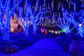 Virginia Holiday Festival Walk Of Lights Royalty Free Stock Photo - 35775535