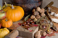 Thanksgiving Scene Royalty Free Stock Photography - 3588357