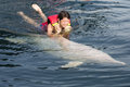 Swimming With Dolphin Stock Photos - 35841153