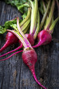 Raw Organic Miniature Red Candy Stripe Beets Royalty Free Stock Photo - 35851475