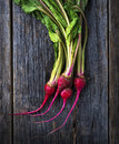 Raw Organic Miniature Red Candy Stripe Beets Royalty Free Stock Photo - 35851735