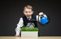 Little Boy Pouring House Model And Green Grass Stock Image - 35866191