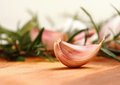 Garlic Clove With Fresh Rosemary In Background Royalty Free Stock Photos - 35874288