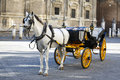 White Horse And Traditional Tourist Carriage In Sevilla Stock Photos - 35969903