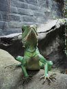 Chinese Water Dragon Stock Photography - 3607632
