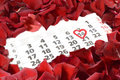 St Valentine S Day Royalty Free Stock Photo - 36005375