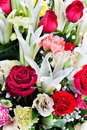 Beautiful Rose, Carnation And Lilly With Water Drops. Stock Image - 36006861