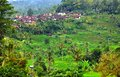 Famous Rice Paddy And Small Village Near Jatliluwih In Bali Royalty Free Stock Photography - 36015827