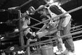 Staffs Of Boxing Team Take Care Of Young Thai Boxer Stock Images - 36034014